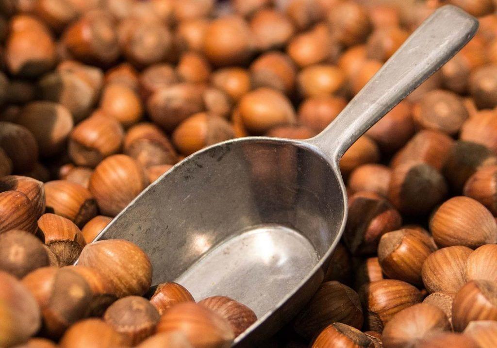 Propiedades saludables de los frutos secos- Avellanas