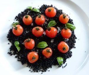 Tomates cherries macerados con aceite de albahaca y tierra de aceitunas. Aperitivo