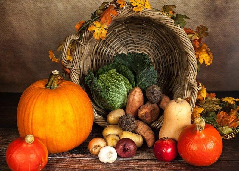 Cesta de la compra – Temporada de otoño